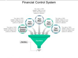 Financial Control System Ppt Powerpoint Presentation Infographic Template Portrait Cpb