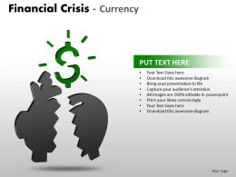 Financial Crisis Currency PPT 16 08