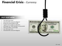 Financial Crisis Currency PPT 23 15