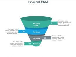 Financial CRM Ppt Powerpoint Presentation Icon Layout Ideas Cpb
