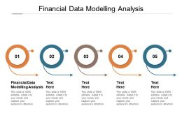 Financial Data Modelling Analysis Ppt Powerpoint Presentation Gallery Designs Download Cpb