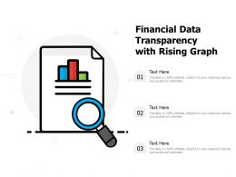 Financial Data Transparency With Rising Graph