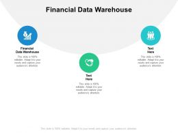 Financial Data Warehouse Ppt Powerpoint Presentation Portfolio Ideas Cpb