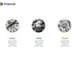 Financial Dollar Coins Pound D258 Ppt Powerpoint Presentation Icon Example