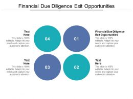 Financial Due Diligence Exit Opportunities Ppt Powerpoint Presentation Inspiration Rules Cpb