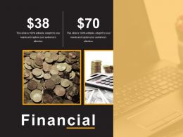 Financial Example Of Ppt