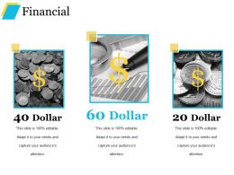 Financial Example Of Ppt Presentation