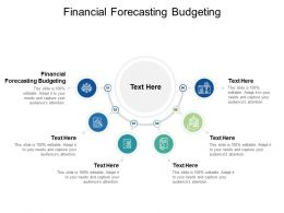 Financial Forecasting Budgeting Ppt Powerpoint Presentation Portfolio Influencers Cpb