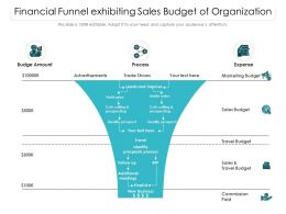 Financial Funnel Exhibiting Sales Budget Of Organization