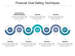 Financial Goal Setting Techniques Ppt Powerpoint Presentation Styles Design Templates Cpb