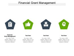 Financial Grant Management Ppt Powerpoint Presentation Professional Structure Cpb