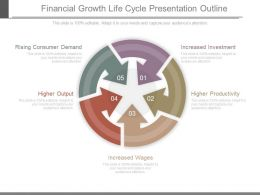 Financial Growth Life Cycle Presentation Outline