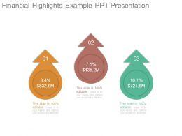 Financial Highlights Example Ppt Presentation