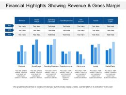 financial_highlights_showing_revenue_and_gross_margin_Slide01