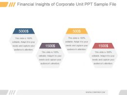 Financial Insights Of Corporate Unit Ppt Sample File
