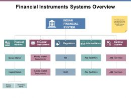 Financial Instruments Systems Overview Ppt Powerpoint Presentation File Ideas