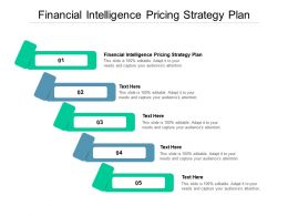 Financial Intelligence Pricing Strategy Plan Ppt Powerpoint Presentation Slides Structure Cpb