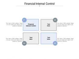 Financial Internal Control Ppt Powerpoint Presentation Icon Maker Cpb