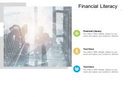 Financial Literacy Ppt Powerpoint Presentation Pictures Smartart Cpb