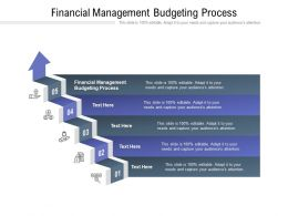 Financial Management Budgeting Process Ppt Powerpoint Presentation Layouts Outfit Cpb