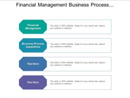 Financial Management Business Process Capabilities Risk Management Process Cpb
