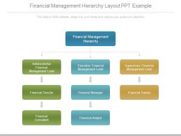 Financial Management Hierarchy Layout Ppt Example