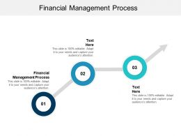 Financial Management Process Ppt Powerpoint Presentation File Graphics Pictures Cpb