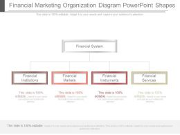 Financial Marketing Organization Diagram Powerpoint Shapes