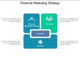 Financial Marketing Strategy Ppt Powerpoint Presentation Summary Sample Cpb