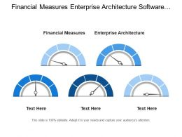 Financial Measures Enterprise Architecture Software Infrastructure Vendors Service Partners