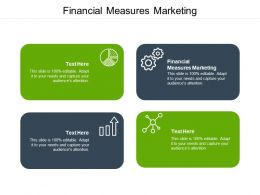 Financial Measures Marketing Ppt Powerpoint Presentation Icon Topics Cpb