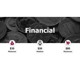 Financial Minimum Maximum D294 Ppt Powerpoint Presentation Infographics Samples