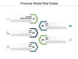 Financial Model Real Estate Ppt Powerpoint Presentation Infographic Template Objects Cpb