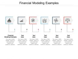 Financial Modeling Examples Ppt Powerpoint Presentation Show Design Inspiration Cpb