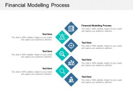 Financial Modelling Process Ppt Powerpoint Presentation Portfolio Examples Cpb