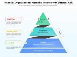 Financial Organizational Hierarchy Structure With Different Risk