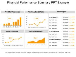 Financial Performance Summary Ppt Example