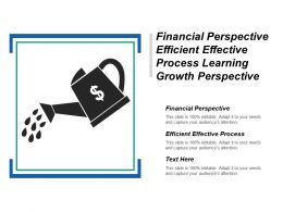 Financial Perspective Efficient Effective Process Learning Growth Perspective Cpb