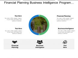 Financial Planning Business Intelligence Program Development Reputation Management