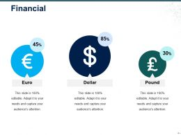 Financial Ppt Examples Slides