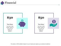 Financial Ppt Professional Example Topics