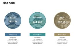 Financial Ppt Slides Infographic Template