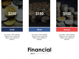 Financial Ppt Styles Format