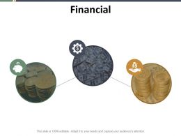 Financial Ppt Styles Infographic Template