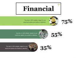 Financial Ppt Summary Mockup
