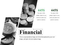 Financial Ppt Summary Templates