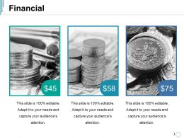 Financial Ppt Summary Vector