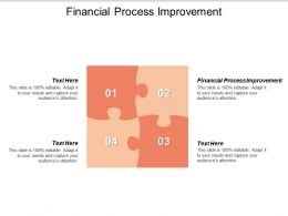 Financial Process Improvement Ppt Powerpoint Presentation Styles Show Cpb