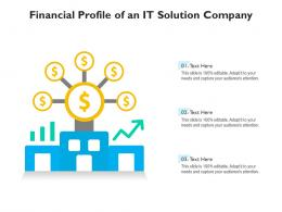 Financial Profile Of An IT Solution Company
