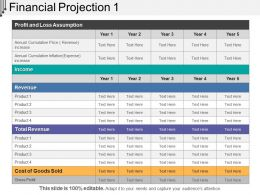 Financial Projection 1 Presentation Outline